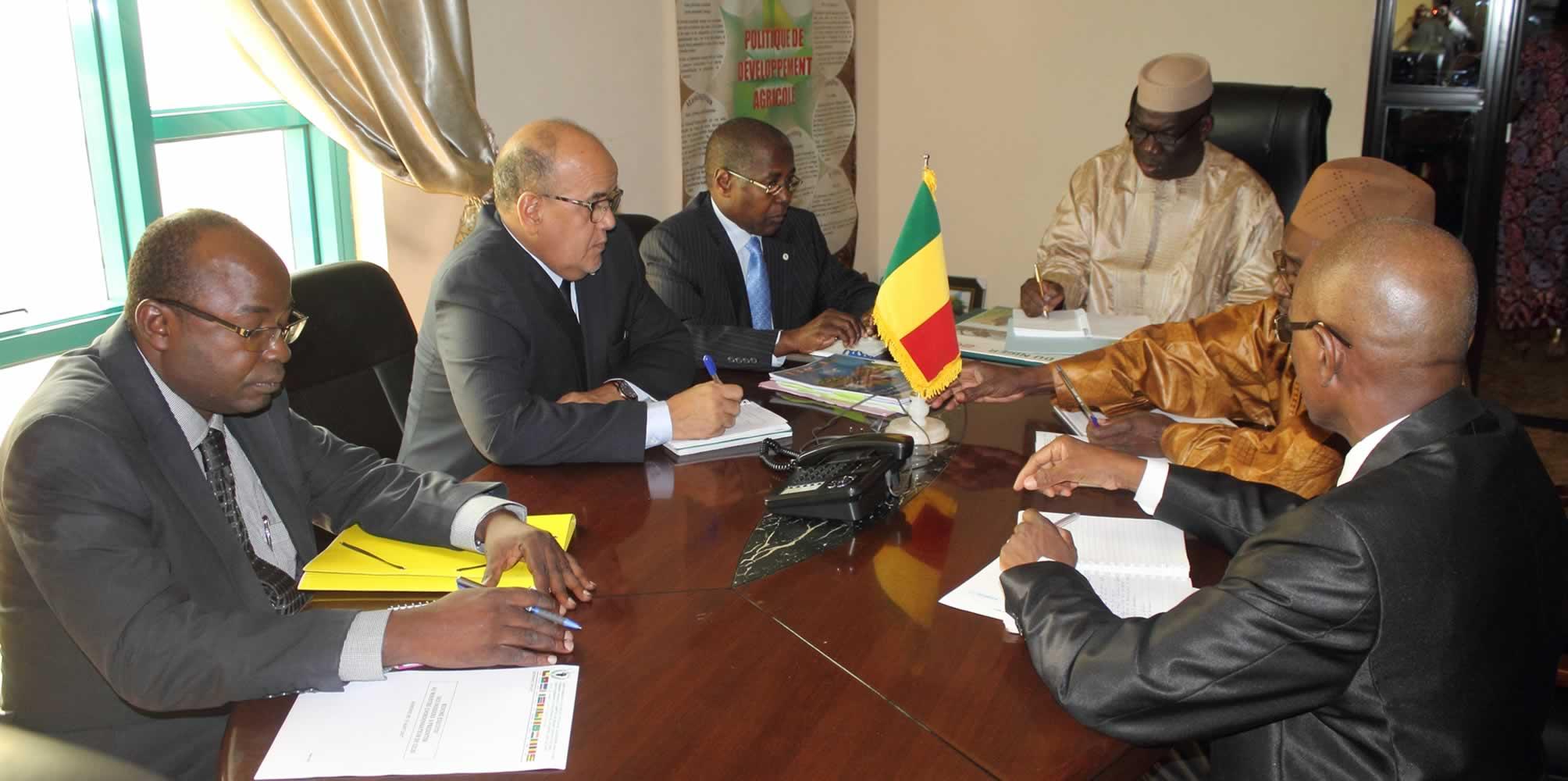 Un Cadre stratégique pour l'eau agricole au Sahel (CSEAS)